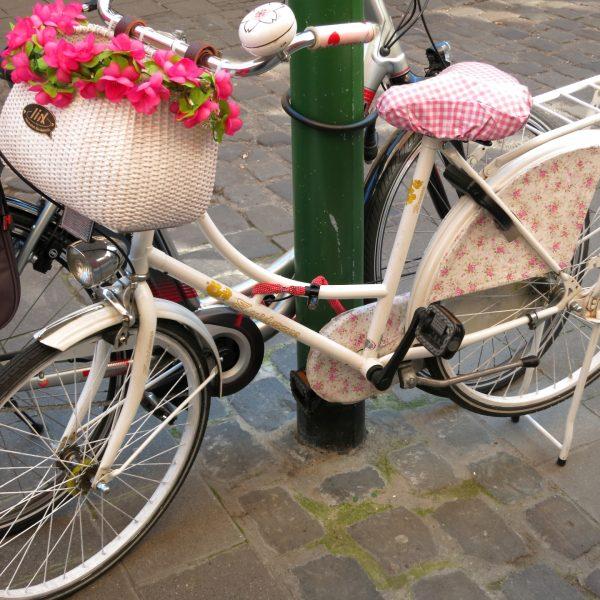 Fahrrad im Kuhviertel Münster