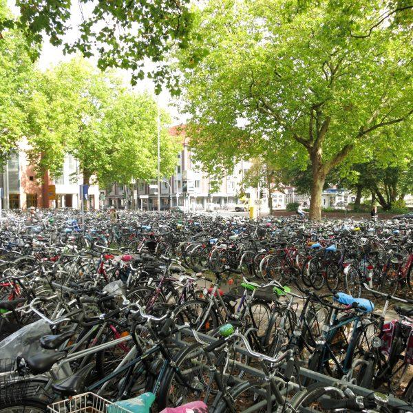 Fahrräder am Bahnhof Münster