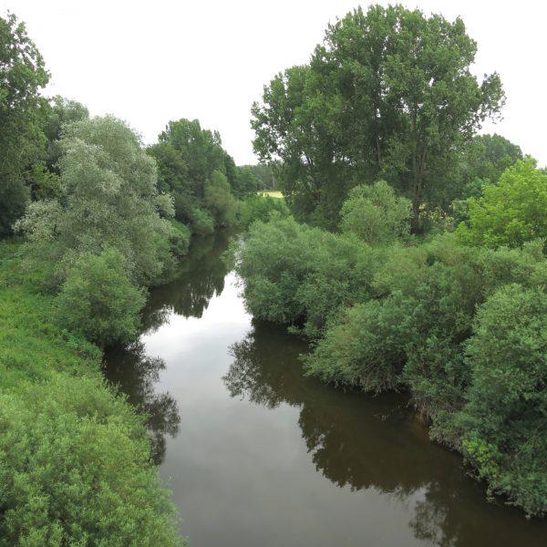 Emsaue bei Münster
