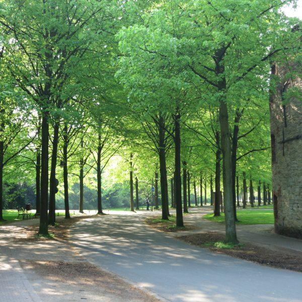 Promenade und Zwinger in Münster