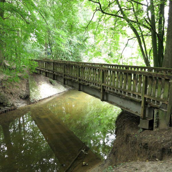 Holzbrücke im Wolbecker Tiergarten in Münster